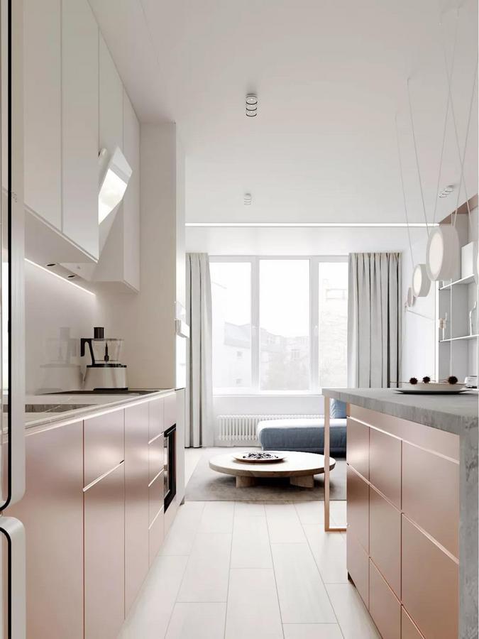 另一侧的客厅是设计的重中之重, 它与厨房处于同一个开放式空间中。